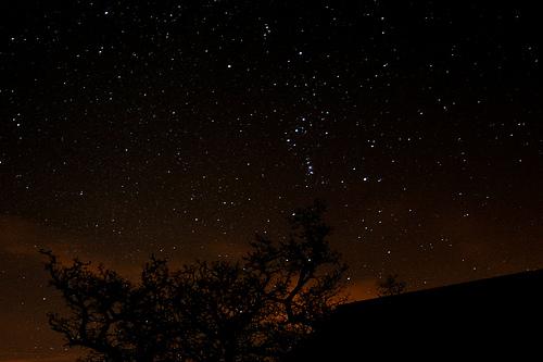 Stargazing 8-1-2011