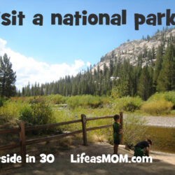 Get Out: Visit a National Forest or Park