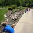 visit the botanic gardens