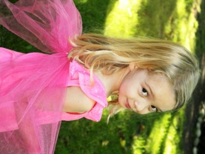 Fairy Wings 4
