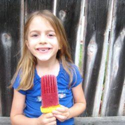 homemade popsicles ice pops