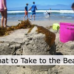 what-to-take-to-the-beach