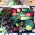 what's in the produce box