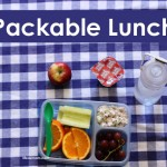 5 Packable Lunches and a Printable Grocery List | Life as MOM