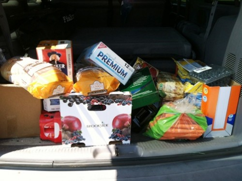 costco grocery haul in back of car