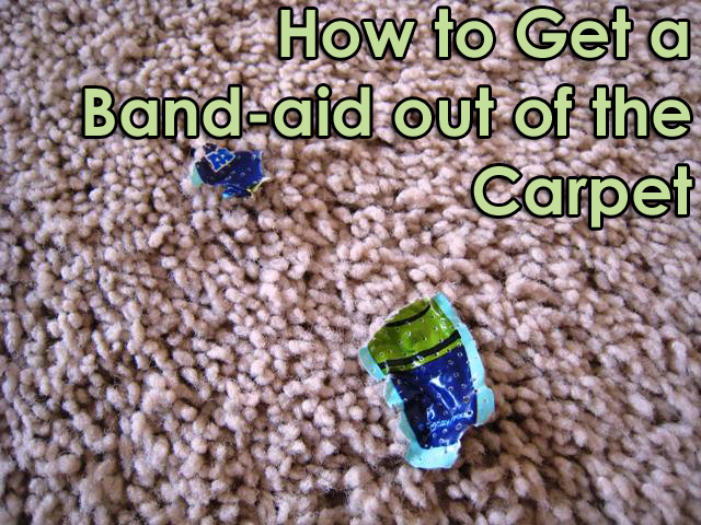 How to Remove a Band-aid from Carpet | Life as MOM