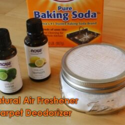 All-Natural Air Freshener and Carpet Deodorizer