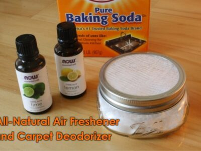 All-Natural Home Air Freshener and Carpet Deodorizer