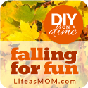DIY-on-a-DIME-falling-for-fun-125
