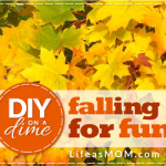 Falling for Fun | Life as MOM