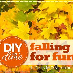 DIY on a Dime: Falling for Fun
