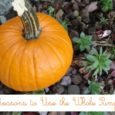 Not Just a Jack O' Lantern | Life as MOM