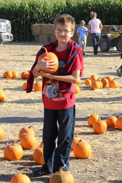 boy in pumpkin patch