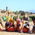 fishkids pumpkins