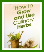 How to Grow and Use Culinary Herbs-2d