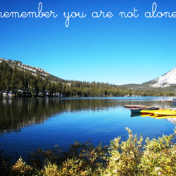 Love Your Life: Remember you are not alone.