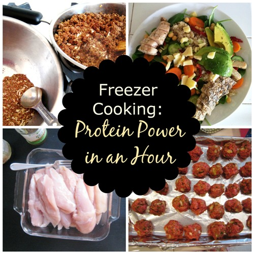 Freezer Cooking: Protein Power in an Hour - a free downloadable cooking plan to help you fill the freezer with main dish proteins in an hour.