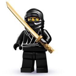 Thank you, Mr. Ninja