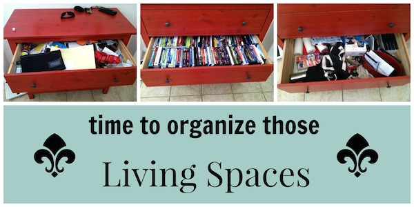 Zone Defense: Organizing the Living Spaces