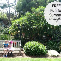 Free Fun for summer