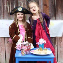 pirate fairies