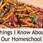 Things I Know About Our Homeschool - Curious about homeschooling? This is where I am today, 42-year old me with six kids, a writing career, and a homeschool.