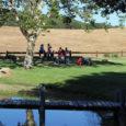 lake cowboys