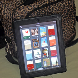 kindle with bag