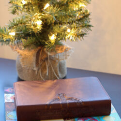 Redeeming Tyndale Rewards and an Advent Giveaway (CLOSED)