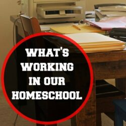 5 Things That are Working in Our Homeschool