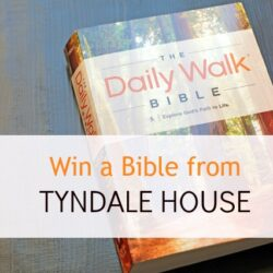 Win a Devotional Bible from Tyndale House (CLOSED)