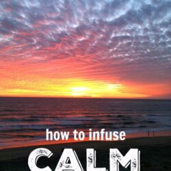 infuse calm busy day