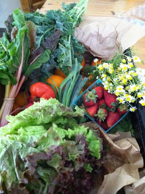 spring produce box
