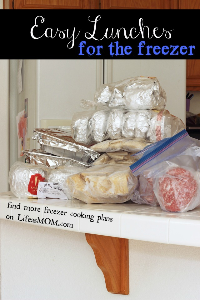 Easy Lunches for the Freezer