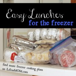 Easy Lunches Freezer Cooking Plan