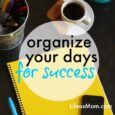 Organize Your Days for Success