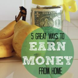 5 Great Ways to Earn Money from Home