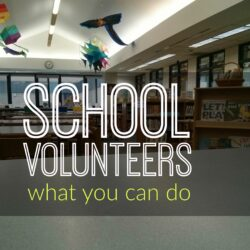 School Volunteers: What You Can Do