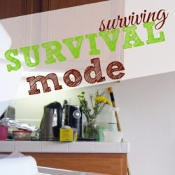 Surviving Survival Mode