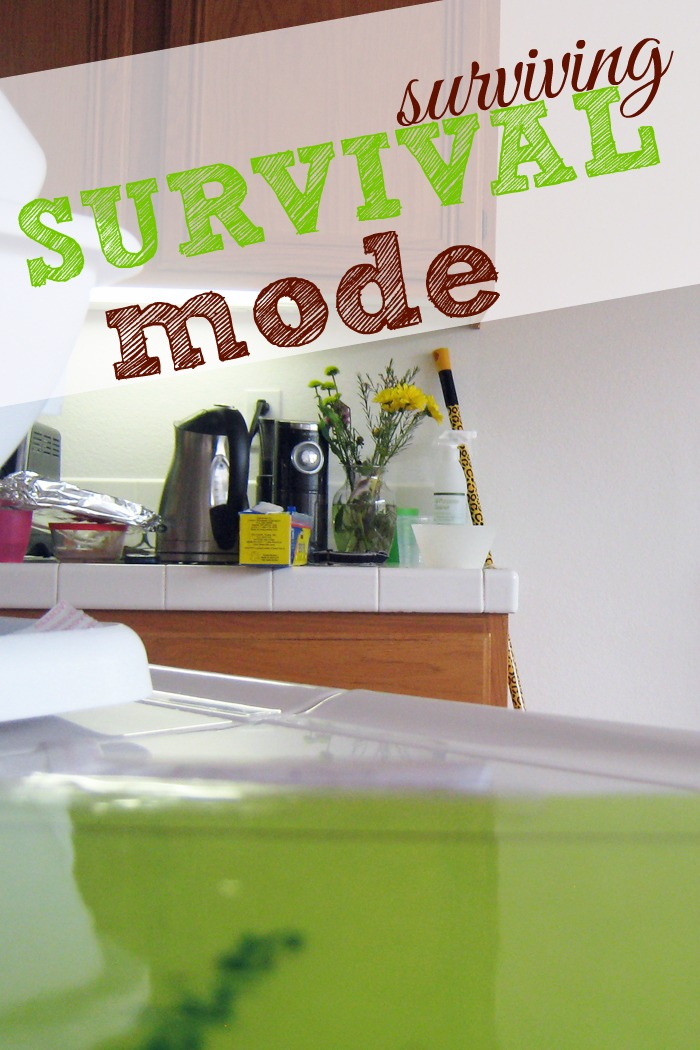 Surviving Survival Mode PIN