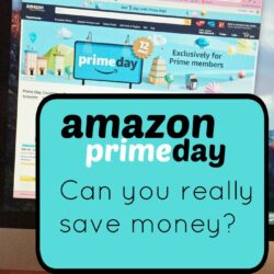 Amazon Prime Day  Life as Mom