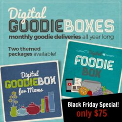 Two-Day Sale! Get Your Goodie Box for Only $75