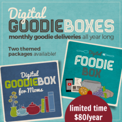 Special Pricing on Goodie Boxes {2 Days Only}