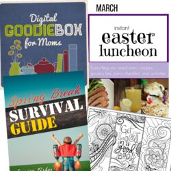 What's in this Month's Goodie Box for Moms?