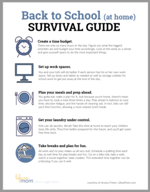 image of BTS survival guide